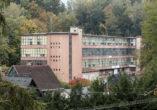 Der etwas in die Jahre gekommene moderne Fabrikbau ist umrahmt von Wald, davor einige kleinere traditionelle Häuser.