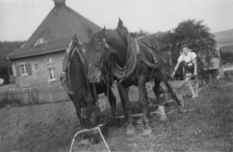 Koně s pluhem zoraným polem vede bosý mladý muž. V pozadí Richterův dům.